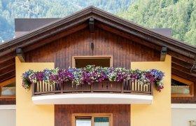 Hotel Belfiore - Val di Sole-1