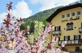Hotel Cevedale - Val di Sole-2